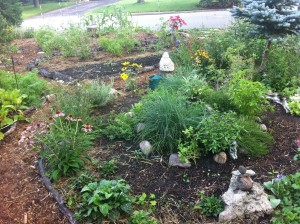 Front Yard Garden with Herb Spiral in Foreground